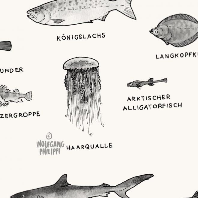 Arktis Antarktis Plakat Wolfgang Philippi