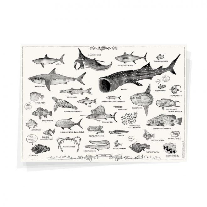 Pazifik Plakat Wolfgang Philippi