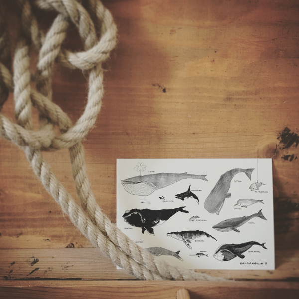 Wale Karte Wolfgang Philippi
